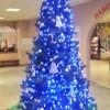 Открытие новогодней елки